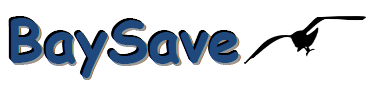 BaySave Corporation